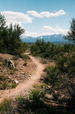 Dead Horse Ranch State Park: Hiking trail with view of Mingus Mountains