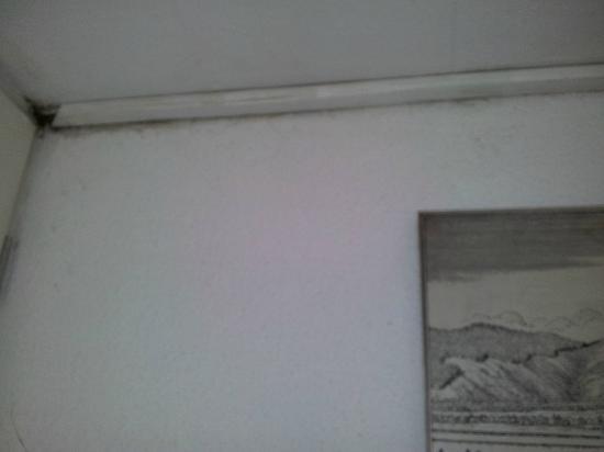 Hotel Kleinmünchen: Staub, Dreck und Spinnenweben im Treppenhaus