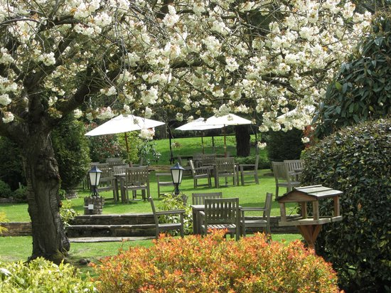 Thatchers Hotel: GARDEN