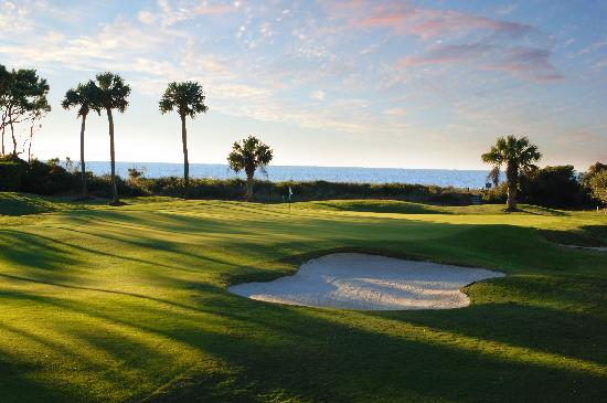 Sea Pines Resort: Ocean Course