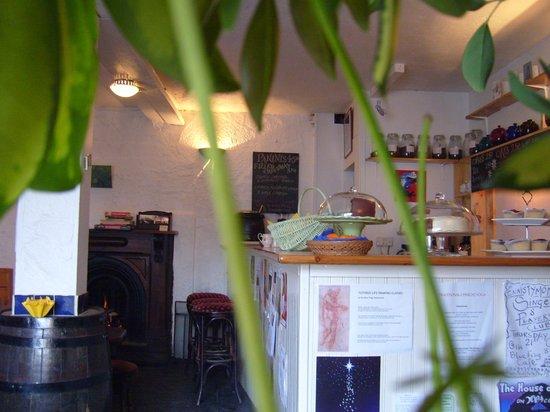 Blue Frog cafe: Blue Frog Café