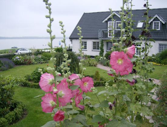 Fjordkroen: Hotel and garden