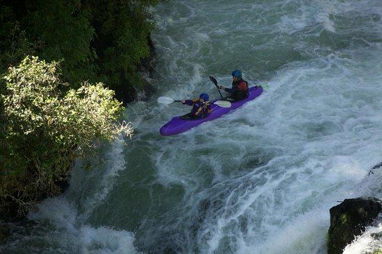 Kaituna Kayaks: Here we go!