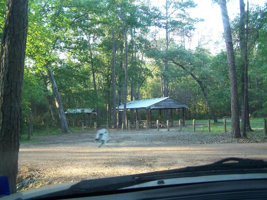 Lake Houston Wilderness Park: Group picnic area