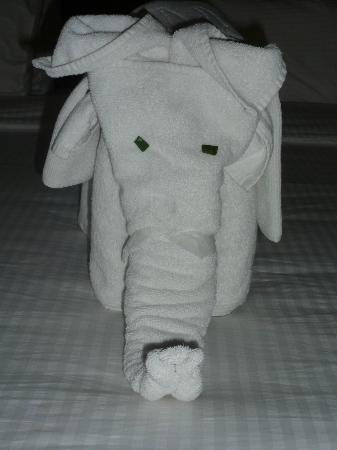 Coral Sea Aqua Club Resort: Towel art.