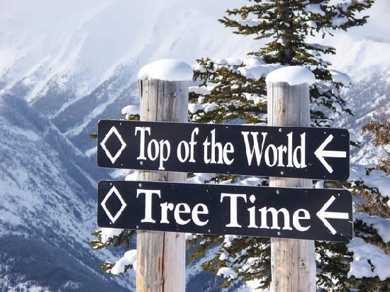 Panorama Vacation Retreat at Horsethief Lodge: Great Skiing on Panorama Mountain