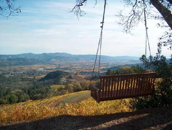 View over Spring Mountain Vineyard