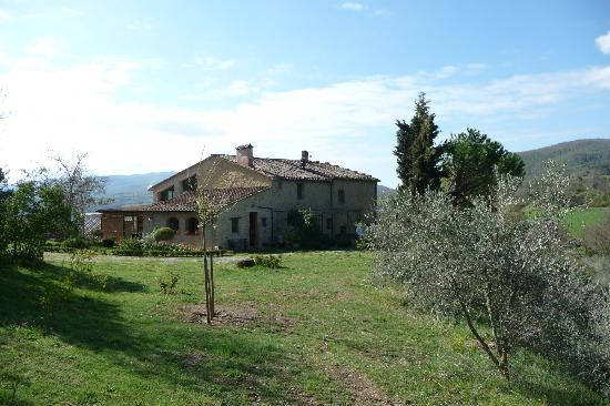 Agriturismo Apparita: A beautiful Tuscan day ...