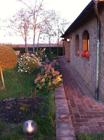 Agriturismo Apparita: The grounds ...
