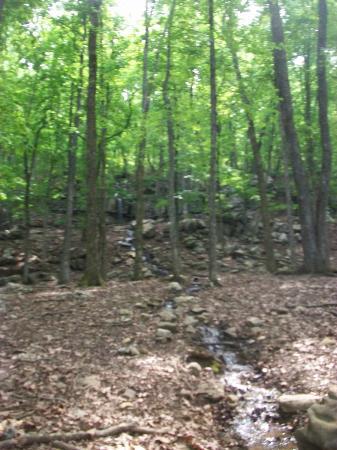 Huntsville, AL: Waterfall view