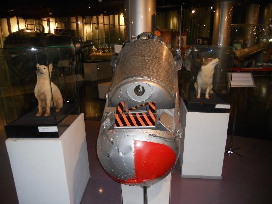 "Space Museum: Strelka, Belka, and a replica of their ""home"" in Sputnik-5."