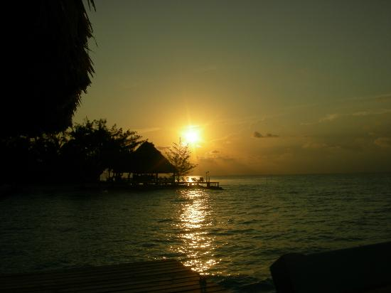 Coco Plum Island Resort: sunset