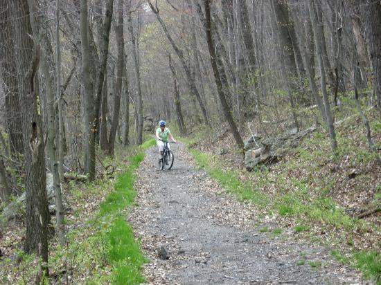 Pocono Biking : Mountain Bike Trail