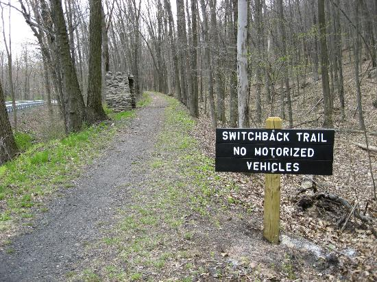 Pocono Biking : Switchback Trail