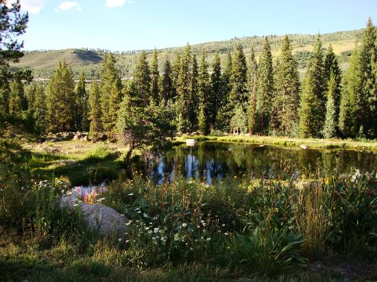 Diamond J Ranch : Pond on lower level of Ranch