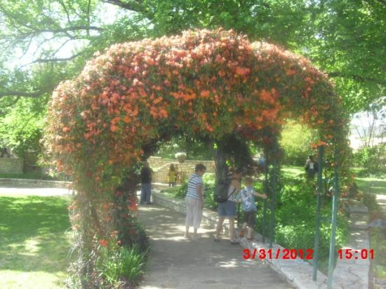 Butterfly exhibit picture of fort worth botanic garden fort worth tripadvisor for Fort worth botanical gardens hours