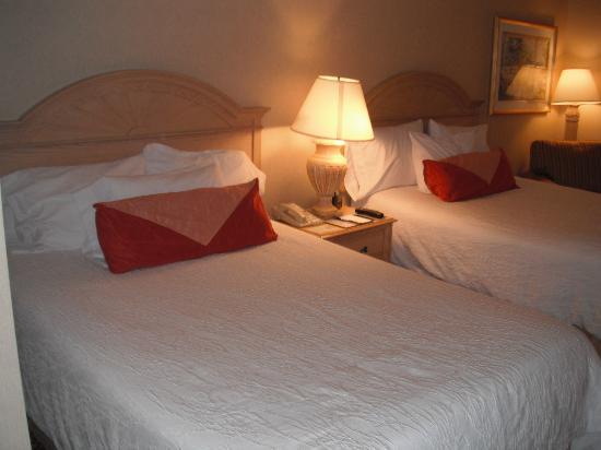 Hilton Garden Inn Flagstaff: Beds