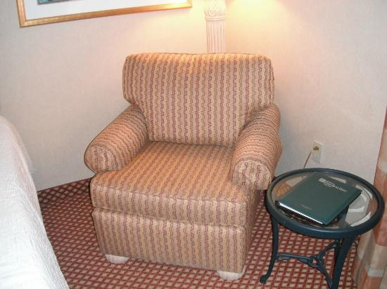 Hilton Garden Inn Flagstaff: Chair