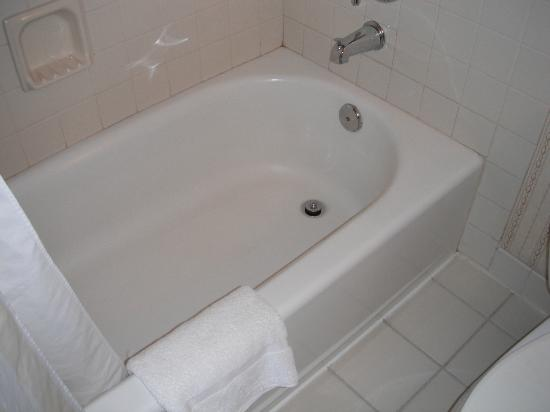 Hilton Garden Inn Flagstaff : Bathtub