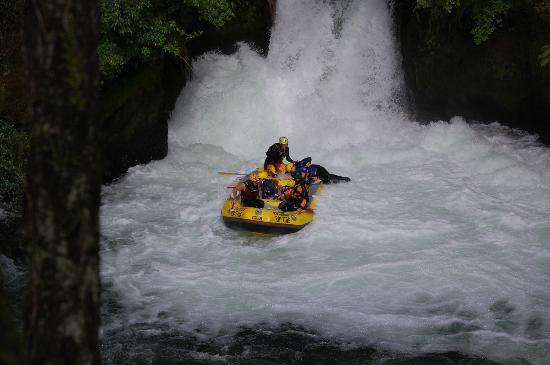Rotorua Rafting: Another look at the big waterfall