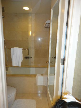 The Ritz-Carlton, Chicago: separate door for toilet and shower from sink area