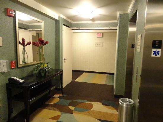 Hilton Garden Inn Ridgefield Park: Elevator waiting area!