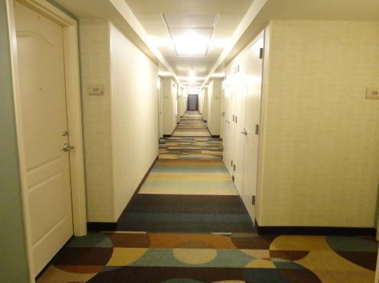 Hilton Garden Inn Ridgefield Park: Hallway!