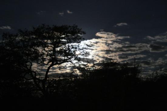 El-Fari Bush Camp: Moonrise from camp site