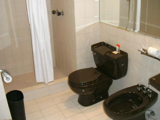 Bagno con sanitari marroni per nascondere meglio lo schifo foto di gran melia caracas hotel - Come sbiancare i sanitari del bagno ...