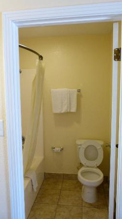 The Bolivar Inn: Bathroom