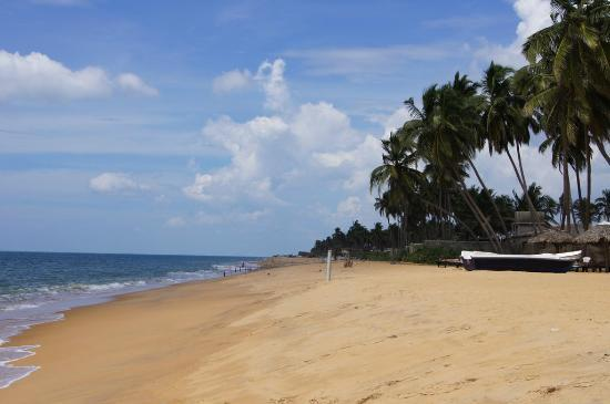 Chilaw, Sri Lanka: Strand von Carolina
