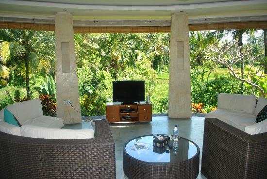 Villa Sancita: tv room