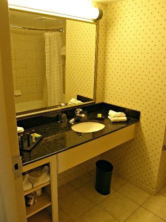 Embassy Suites by Hilton Niagara Falls Fallsview Hotel: Baño