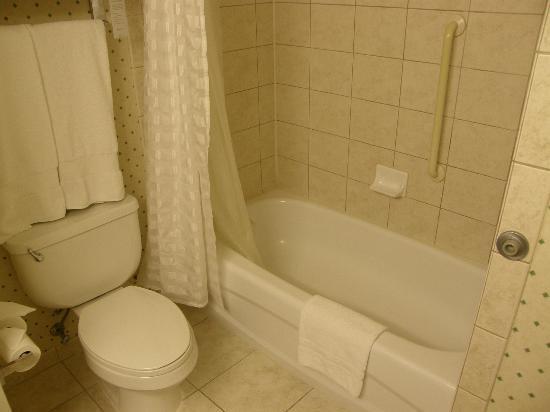 Embassy Suites by Hilton Niagara Falls Fallsview Hotel: Bañera