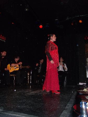 Flamenco fotograf a de casa patas madrid tripadvisor - Casa patas flamenco ...
