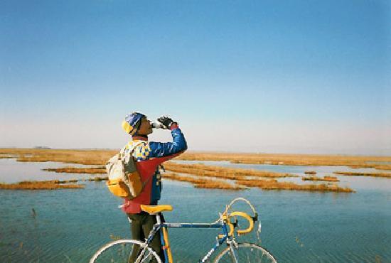 Bed and Breakfast Casa del Miele: bici in laguna