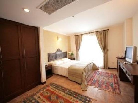 Ipek Garden Palace Boutique Hotel : standard room