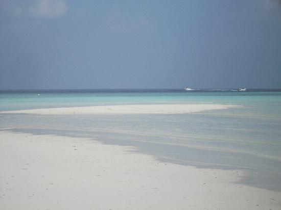 Bodufinolhu Island: a reall dream...