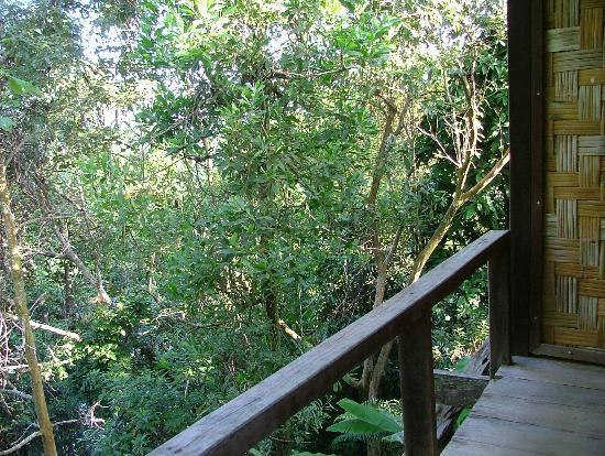 Paganakan Dii Tropical Retreat: View from the Balcony... Jungle!
