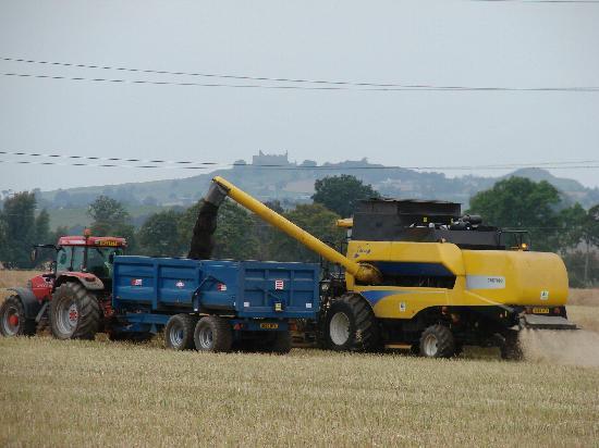 Crosshall Farmhouse B&B: busy at harvest time