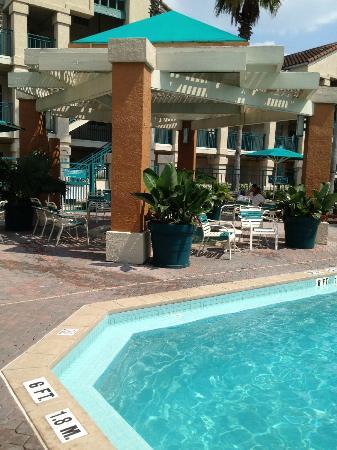 Staybridge Suites Lake Buena Vista: The hottub area