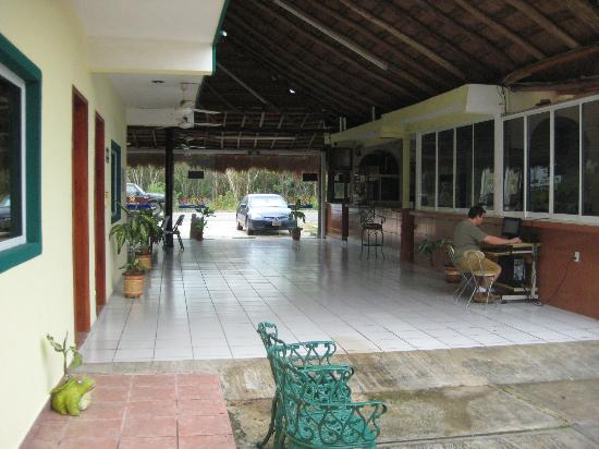 Hotel Palma Real: Vista de la alberca hacia la carretera