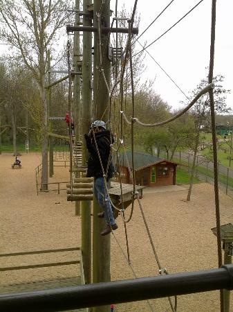Aerial Extreme, Willen Lake : crossing the lower level of the adult high ropes adventure course