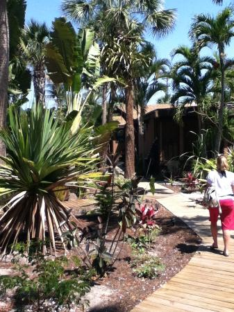 Kona Kai Motel: Beautiful courtyards.