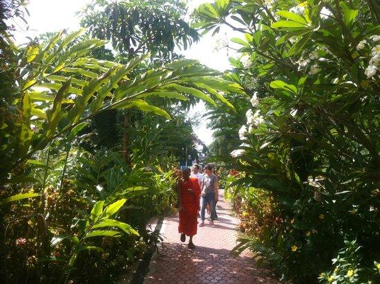 Huay Mongkol Temple: Monk