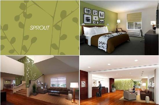 Sleep Inn Concord: Newly Renovated! ENJOY