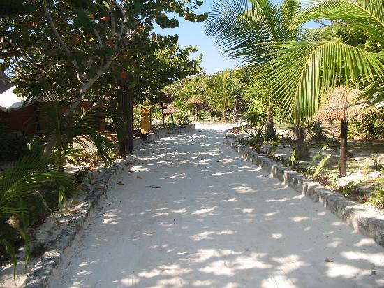 لا فيتا إي بيلا: La Vita walkway