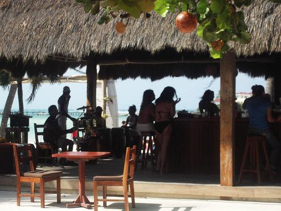Fenix Lounge Restaurant & Beach Club: Fenix Beach Club