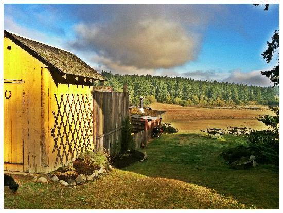 Juniper Lane Guest House: view of beaverton valley