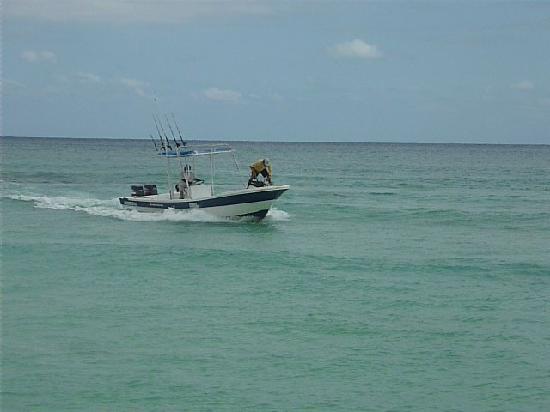 Playa fishing charter cherry playa del carmen 2018 all for Playa del carmen fishing charters